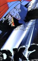 Batman La Relève Dk2 - T2