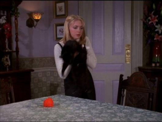 Sabrina Babysitter