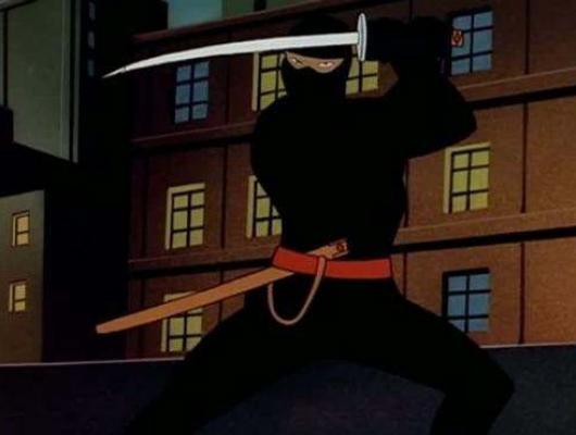La Nuit Du Ninja
